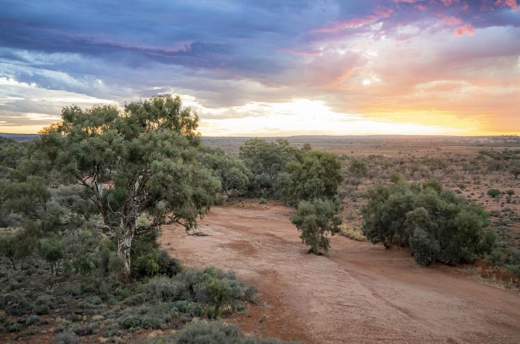 NEW OUTBACK RESERVE TO PROTECT DIVERSE WESTERN WILDERNESS