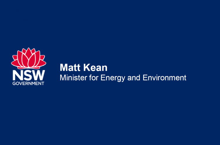 Minister for Energy and Environment