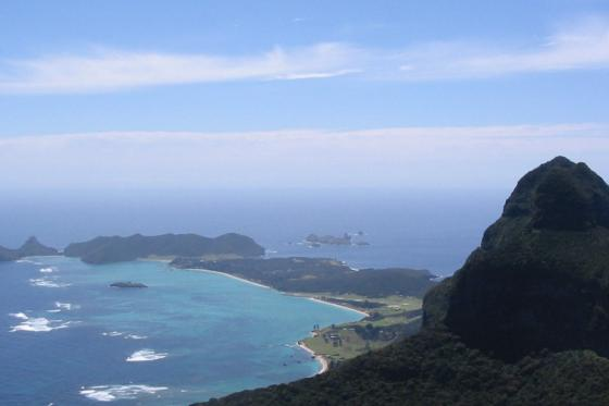 Rodent eradication gives Lord Howe Biodiversity Boom